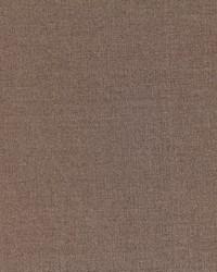 Robert Allen Tramore Ii Mink Fabric