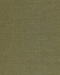 Robert Allen Tramore Ii Lichen Fabric
