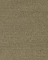 Robert Allen Tramore Ii Stem Fabric