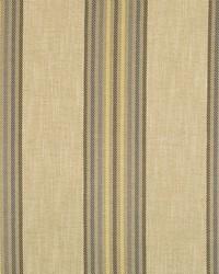 Robert Allen Trooper RR BK Cove Fabric