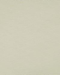 Robert Allen Becko Birch Fabric
