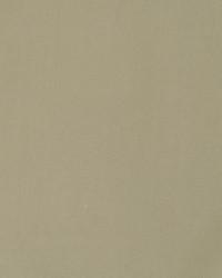 Robert Allen Forever Velvet Linen Fabric
