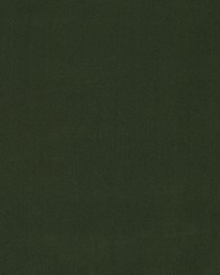 Robert Allen Forever Velvet Evergreen Fabric