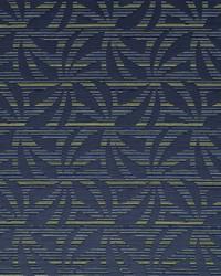 Robert Allen Chico Indigo Fabric