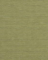 Robert Allen Bremond Cactus Fabric