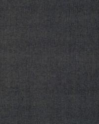 Robert Allen Lustrum Bk Ink Fabric