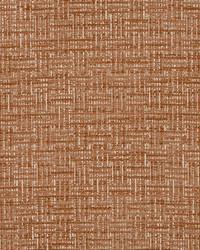 Robert Allen Code Matrix Persimmon Fabric