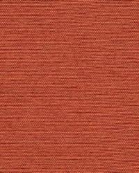 Robert Allen Aerial Row Persimmon Fabric