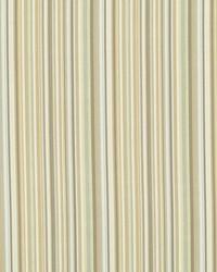 Robert Allen Tailored Edge Citron Fabric
