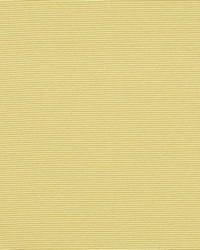 Robert Allen Perimeter Citron Fabric