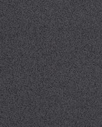 Robert Allen Plethora Charcoal Fabric
