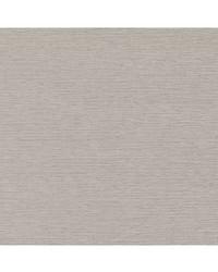 Robert Allen Munda Blackout Platinum Fabric