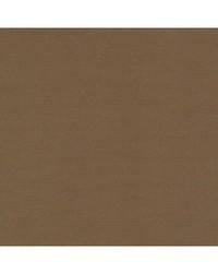 Robert Allen Tenmaru Blkout Bronze Fabric