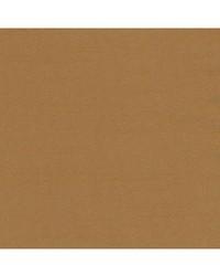Robert Allen Tenmaru Blkout Camel Fabric