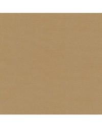 Robert Allen Tenmaru Blkout Flax Fabric