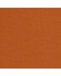Robert Allen Tenmaru Blkout Tangerine Fabric