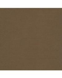 Robert Allen Tenmaru Blkout Taupe Fabric