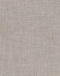 Robert Allen Borucu Abalone Fabric