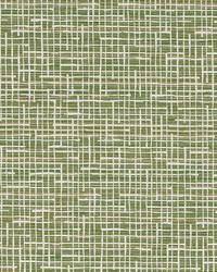Robert Allen Rexford Fern Fabric