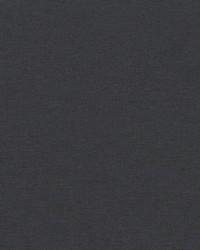 Robert Allen Ardenvoir Gunmetal Fabric