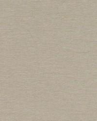 Robert Allen Ardenvoir Moss Fabric