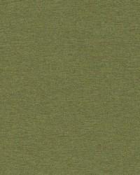 Robert Allen Ardenvoir Fern Fabric