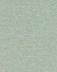 Robert Allen Ardenvoir Mint Fabric