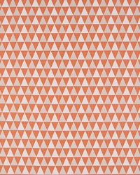 Robert Allen SEQUENCER MANDARIN Fabric