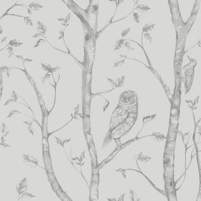 Brewster Wallcovering Neptune Grey Forest Wallpaper Grey Animals