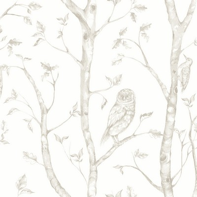 Brewster Wallcovering Neptune Taupe Forest Wallpaper Taupe Search Results