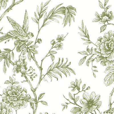 Brewster Wallcovering Jessamine Green Floral Trail Wallpaper Green Animals