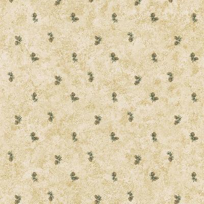 Brewster Wallcovering Evergreen Taupe Pinecones Taupe New Country