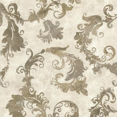 Brewster Wallcovering Lana Brown Scrolling Trail Brown Brewster Wallpaper