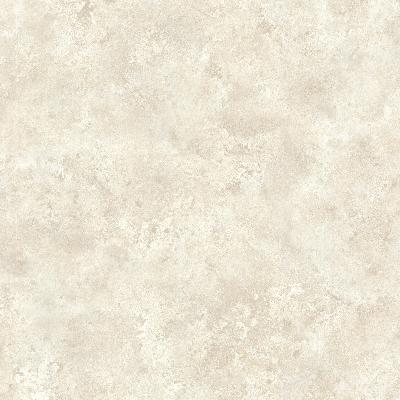 Brewster Wallcovering January Taupe Distressed Texture Taupe Brewster Wallpaper