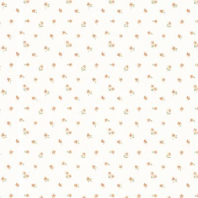 Brewster Wallcovering Elyse Peach Mini Toss Peach Traditional Flower Wallpaper