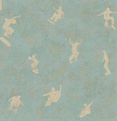 Brewster Wallcovering Sheen Light Blue Skaters Toss Wallpaper Light Blue Boys Wallpaper