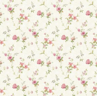 Brewster Wallcovering Cream Tiger Lily Trail Cream Search Results