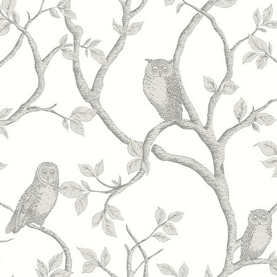 Brewster Wallcovering Enchanted Forest Grey Owl & Tree Wallpaper Grey Animals