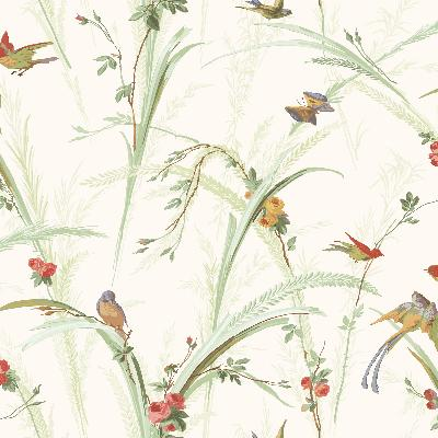 Brewster Wallcovering Cheshire Green Meadowlark Trail Green Animals