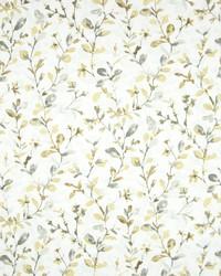 Greenhouse Fabrics B7199 GOLD DUST Fabric