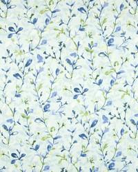 Greenhouse Fabrics B7226 RAINWATER Fabric