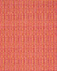 Greenhouse Fabrics B7275 FRUIT PUNCH Fabric