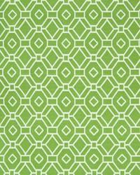Greenhouse Fabrics B7293 ISLAND GREEN Fabric