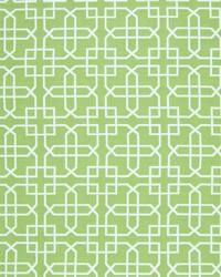 Greenhouse Fabrics B7298 ISLAND GREEN Fabric