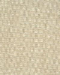 Greenhouse Fabrics B7316 RAFFIA Fabric
