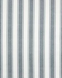 Greenhouse Fabrics B7348 SLATE Fabric