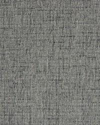 Greenhouse Fabrics B7534 SMOKE Fabric