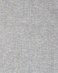 Greenhouse Fabrics B7701 ASH Fabric