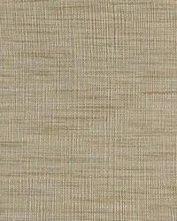 Greenhouse Fabrics B7755 DRIFTWOOD Fabric
