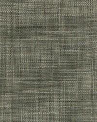 Greenhouse Fabrics B7768 CHARCOAL Fabric